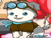 Play Happy Cute Puppy Care